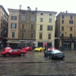 2011_09_04_cavallini_in_festa_piazza_della_loggia_brescia_072