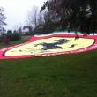 2011_12_03_cena_sociale_tenuta_cantalupa_sfilata-324