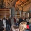 2012_04_21_d_visita_al_borgo_cantine_syrah-106