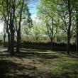 2012_04_21_d_visita_al_borgo_cantine_syrah-189