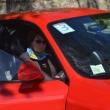 2012_04_21_d_visita_al_borgo_cantine_syrah-227