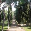 2012_04_22_g_villa_petrischio-292-380