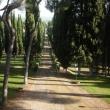 2012_04_22_g_villa_petrischio-293-381