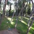 2012_04_22_g_villa_petrischio-294-382