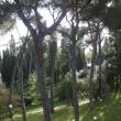 2012_04_22_g_villa_petrischio-295-383