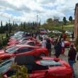 2012_04_22_i_azienda_vinicola_il_fitto-430