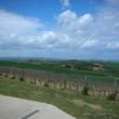 2012_04_22_i_azienda_vinicola_il_fitto-452