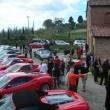 2012_04_22_i_azienda_vinicola_il_fitto-460