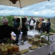 2012_04_22_i_azienda_vinicola_il_fitto-470