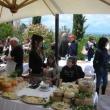 2012_04_22_i_azienda_vinicola_il_fitto-473