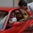 2012_06_24_13esimo_ritrovo_le_rosse_a_caprino_034