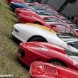 2014_06_15_Tributo_Schumacher_Le_Ferrari_In_Pista_263