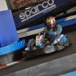 2014_10_05_I_Trofeo_GILLES_VILLENEUVE_Endurance_Kart_Lariomotorsport_Colico_304