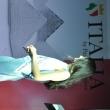 2017_06_18_Ritrovo_Villa_d'Adda_Selezione_Miss_Italia_314